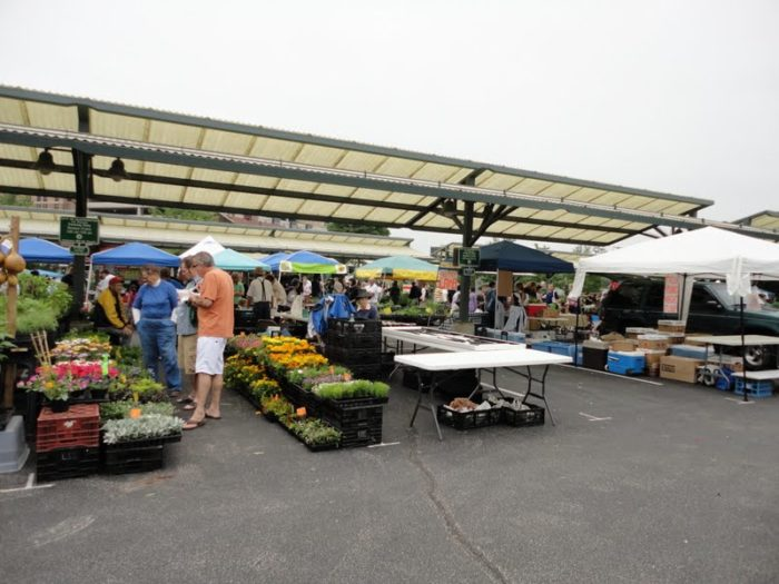 Farmers market in Bloomington, Indiana