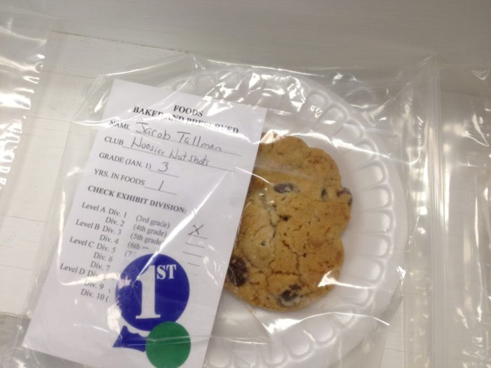 Blue Ribbon Chocolate Chip Cookies - the winner!