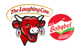 Laughing Cow Queso Salsa Dip