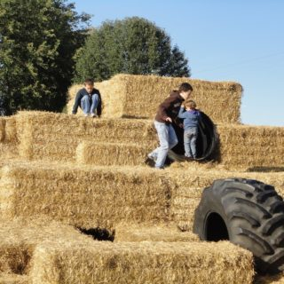 Fall Fun in Johnson County Indiana
