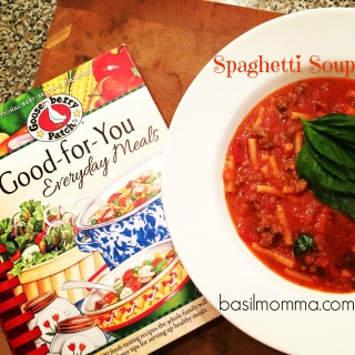 Spaghetti Soup~ A Gooseberry Patch Cookbook Review