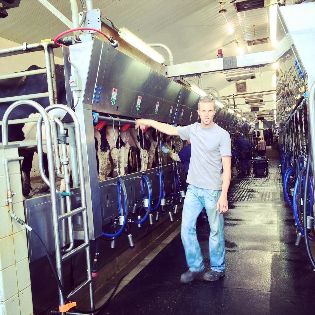 Four Leaf Clover Dairy