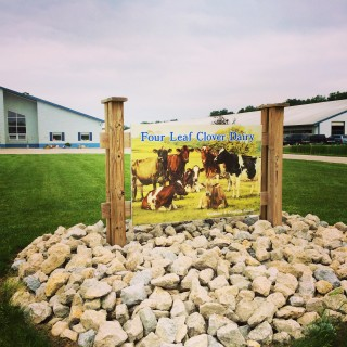 A Visit to Indiana's Four Leaf Clover Dairy