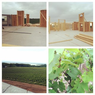 Sneak Peek of Bonobo Winery, Old Mission Peninsula- Traverse City, Michigan