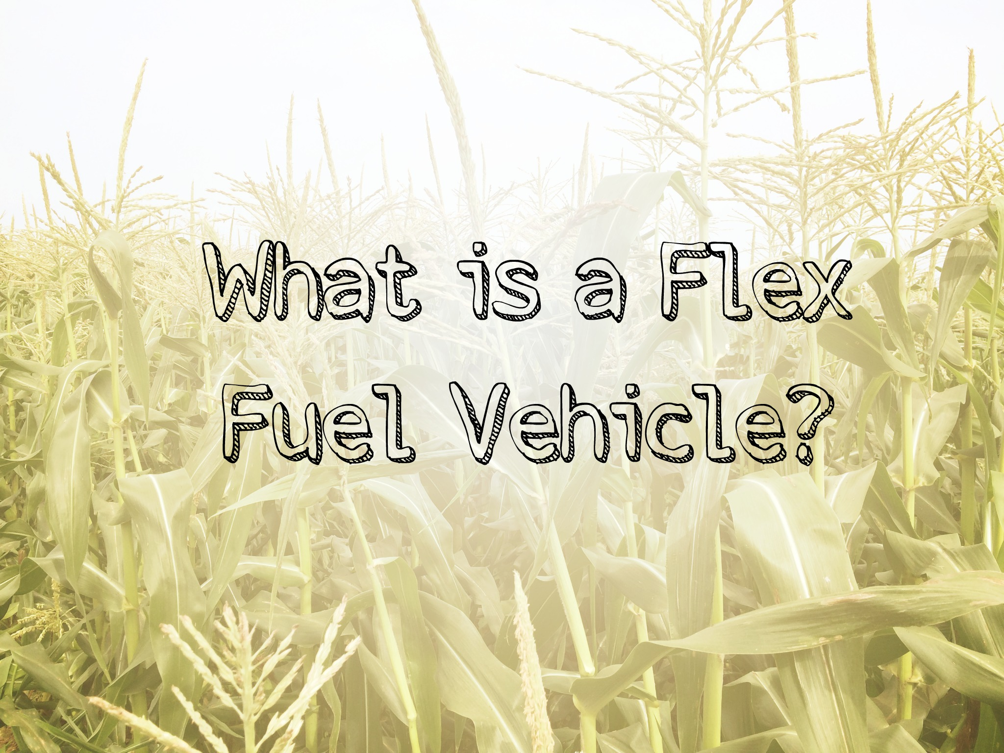What is a Flex Fuel Vehicle?