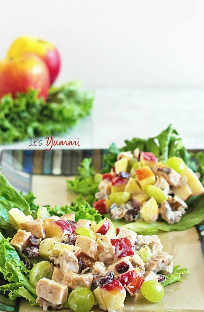 This healthy chicken Waldorf salad is one of our favorite dinner salads! Tender chicken breast, fresh and dried fruits, and nuts are tossed  with a healthy, low fat, no-sugar-added yogurt dressing.