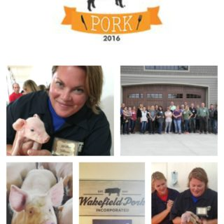 Pig Farming- Farm to Table with Wakefield Pork
