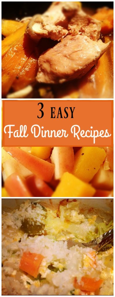 3 easy fall dinner recipes!  A slow cooker chicken stew recipe, a simple turkey sausage skillet meal, and healthy fall vegetable gratin recipe.