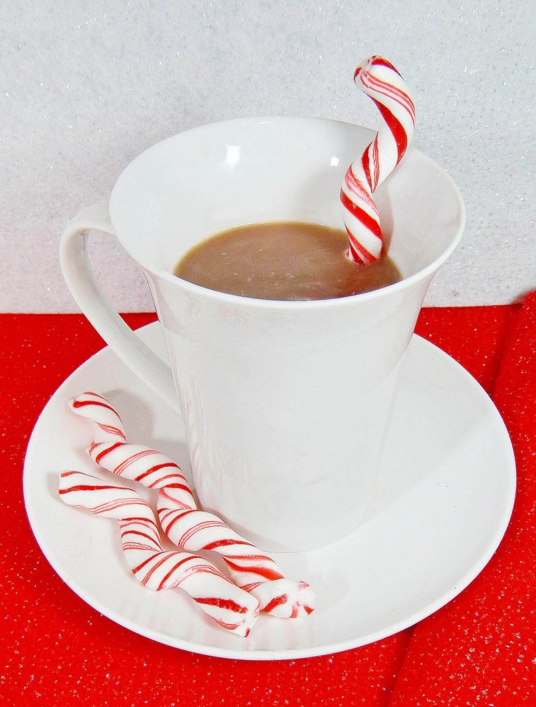 Candy Cane Swizzle Sticks from Frosting and a Smile - An easy Christmas dessert that goes perfectly in a mug of hot cocoa.
